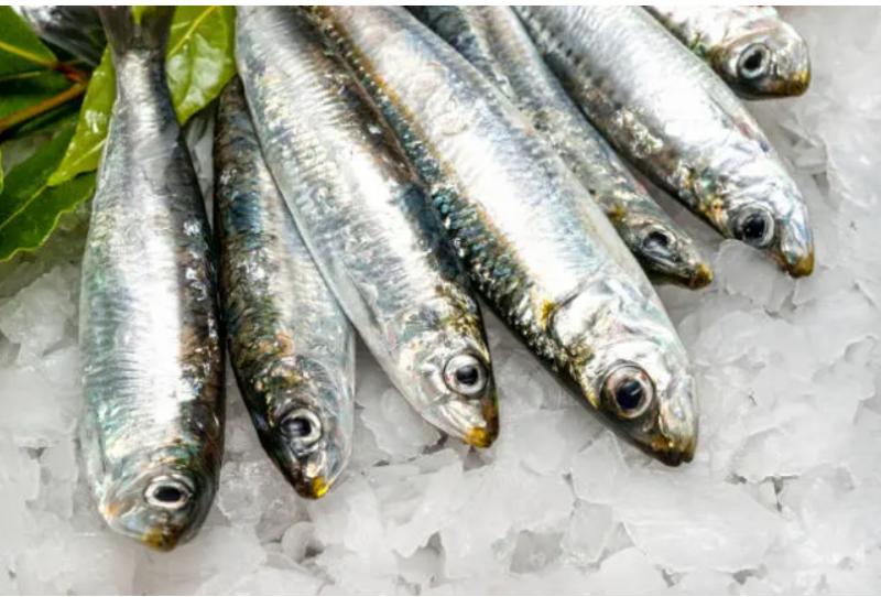 5 وجبات خفيفة تحسن مستويات هرمون الذكورة (4)