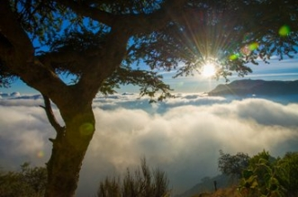 تطوير جهة جبلية سياحية عالمية على أرض المملكة .. طبيعة وأجواء فريدة لعشاق المغامرة - المواطن