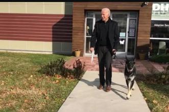 طرد كلبي بايدن من البيت الأبيض بسبب عض الحارس (4)