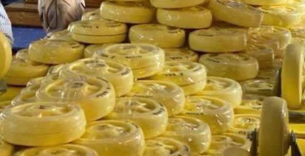 بمساعدة الداخلية السعودية.. ماليزيا تصادر أكبر كمية مخدرات في تاريخها وزنها 16 طنًّا