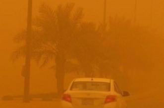 هؤلاء أكثر تعرضًا للمشاكل الصحية بسبب العواصف الغبارية - المواطن