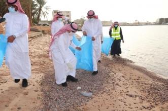 أمانة تبوك تعلق على مقطع إلقاء عامل بلدية للنفايات بشاطئ منتزه النخيل - المواطن