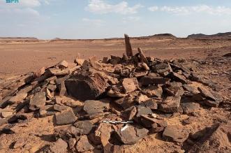 اكتشاف أقدم دليل لاستئناس الكلاب في الجزيرة العربية بمحافظة العلا - المواطن