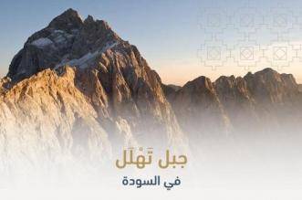 جبل تَهْلَل في أبها .. من مواقع البطولة السعودية المقاومة للغزاة - المواطن