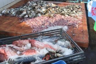 3 علامات تجعل الأسماك غير صالحة للاستهلاك - المواطن