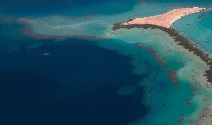 مشروعات نيوم والرياض الخضراء تدعم السياحة البيئية في السعودية