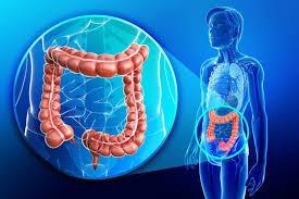 إذا كنت تعاني من التهاب القولون فلا تقترب من هذه الأغذية