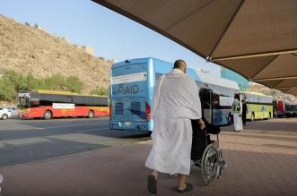 حافلات مجهزة لنقل ذوي الإعاقة وكبار السن إلى المسجد الحرام - المواطن