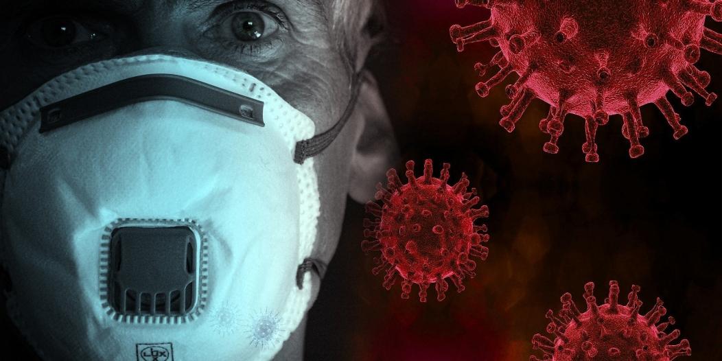 وباء قادم في أجنحة الطيور وينتقل بالهواء!