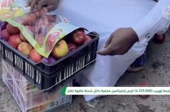 فيديو.. إحباط تهريب أكثر من 4 ملايين قرص إمفيتامين في شحنة تفاح بميناء جدة - المواطن