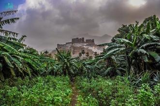 قرية ذي عين بالمخواة تشهد على تراث الباحة لأكثر من 400 عام - المواطن