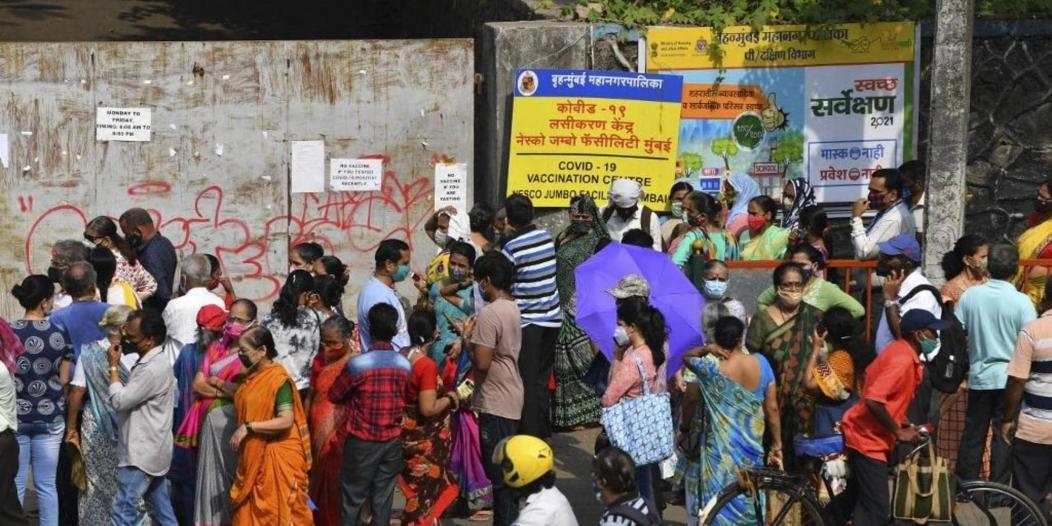 العفن الأسود يتفشى في الهند