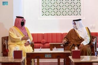 وزير الداخلية يبحث العلاقات الأخوية والتعاون مع ولي عهد البحرين - المواطن
