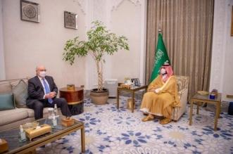 محمد بن سلمان يلتقي المبعوث الأمريكي الخاص إلى اليمن - المواطن
