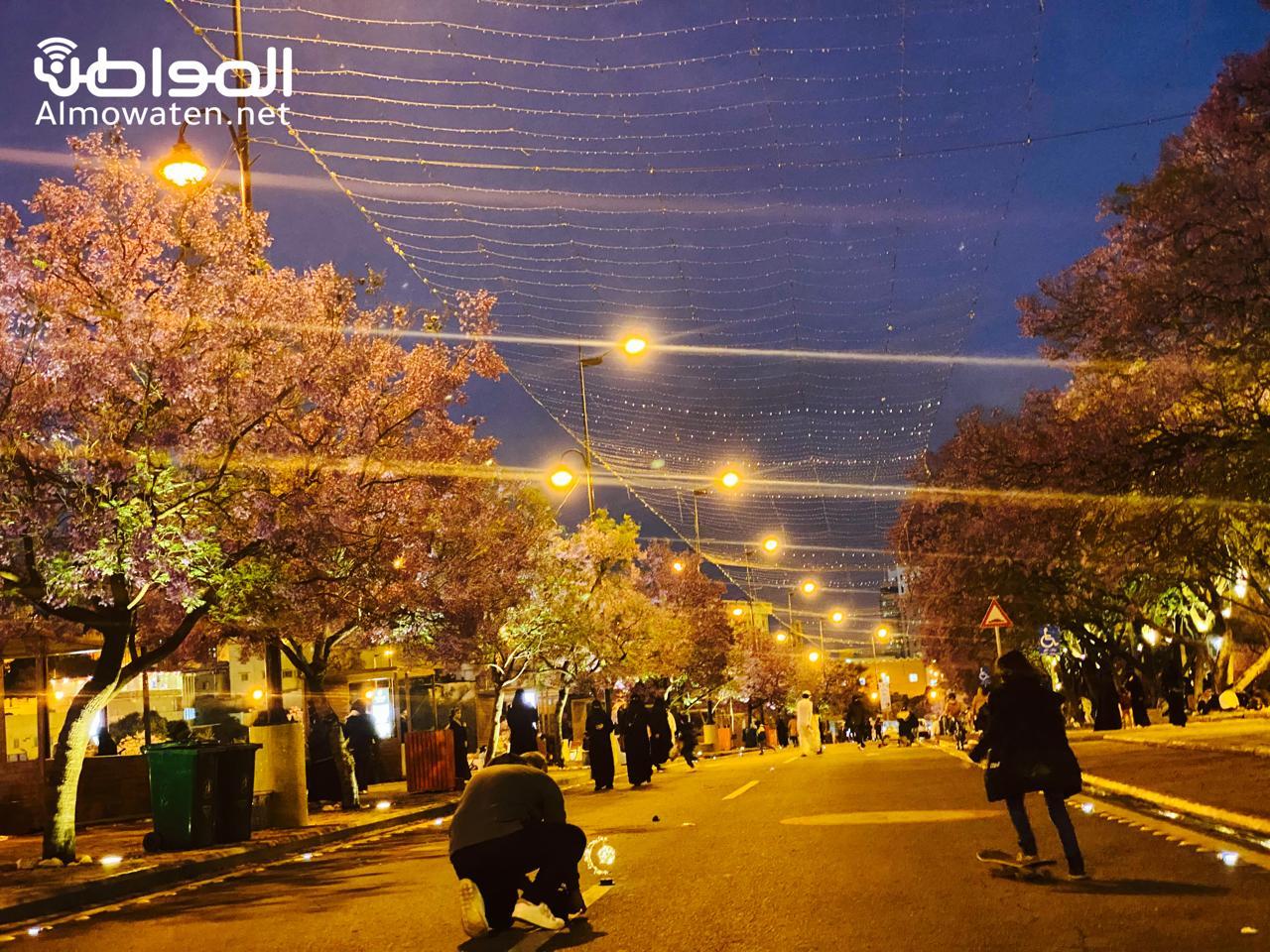 شارع الفن في أبها يجذب الأهالي بالجمال البنفسجي - المواطن
