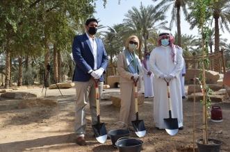 سفارة أمريكا تنضم إلى مبادرة السعودية الخضراء بزرع 21 شجرة - المواطن