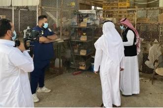 استشاري بعد إغلاق حراج الطيور في جدة احترازيًا: نمر بمرحلة صعبة - المواطن