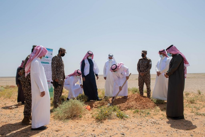 حملة لزراعة 800 ألف شتلة للحد من التصحر - المواطن