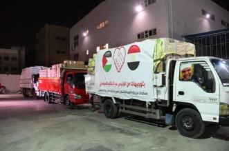 مصر ترسل 65 طنًّا من الأدوية لـ غزة و11 مستشفى لعلاج الجرحى - المواطن