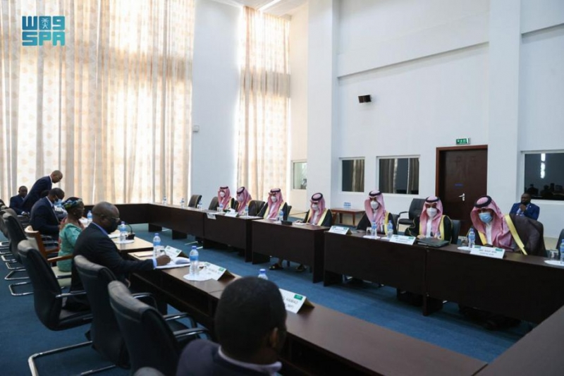 وزير الخارجية يلتقي نظيرته التنزانية ويعقدان جلسة مباحثات رسمية - المواطن