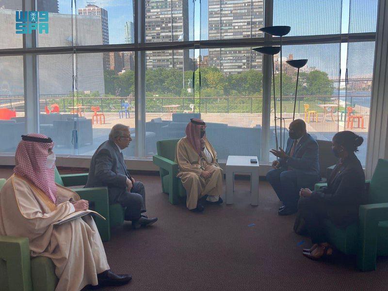 وزير الخارجية يبحث مع وزيري خارجية باكستان والمالديف مستجدات القضية الفلسطينية - المواطن