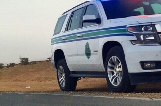 ضبط مقيم يخفي وافدة مخالفة داخل شاحنة على طريق رفحاء - حفر الباطن - المواطن