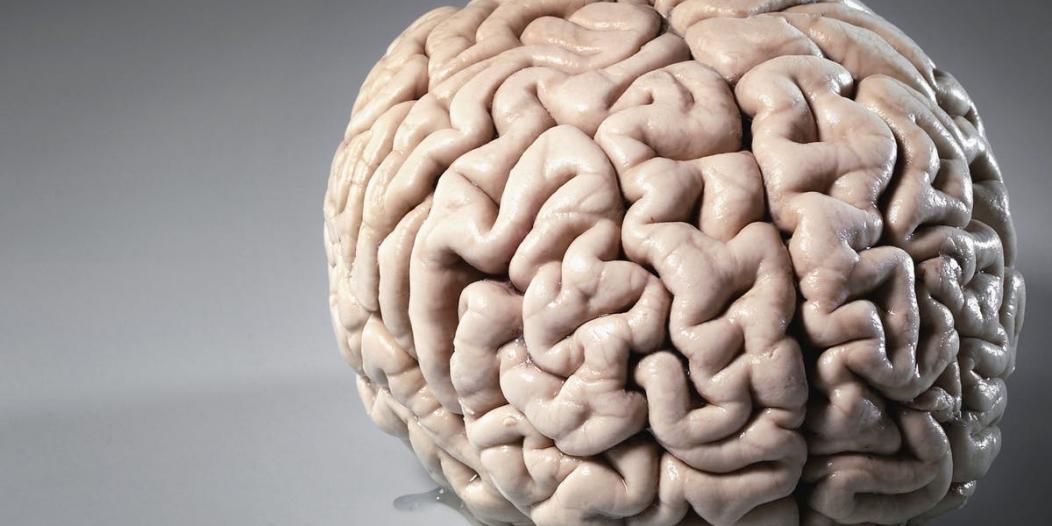أخطر 5 مواد غذائية على الدماغ