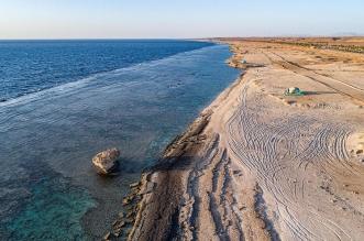 جمال المكان يلتقي بالأجواء المعتدلة في شاطئ الدرر بالوجه - المواطن