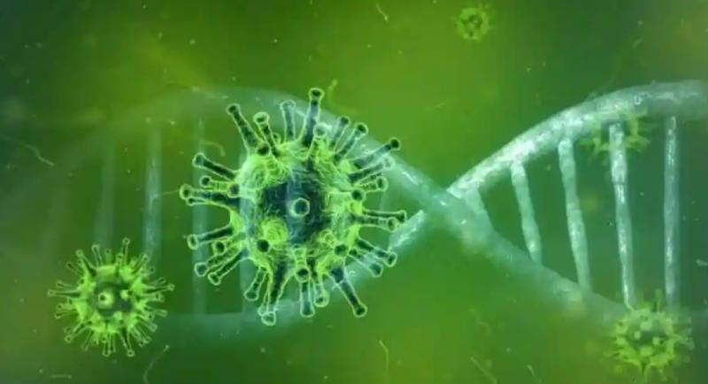 ما هو الفطر الأخضر وأسبابه وأعراضه ؟