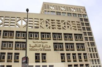 خلال أيام.. مصر تتسلم آخر شريحة من قرض صندوق النقد - المواطن