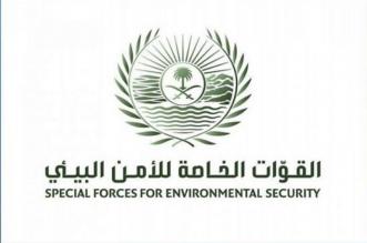 ضبط مخالفين نقلا الرمال وجرفا التربة في مكة المكرمة - المواطن