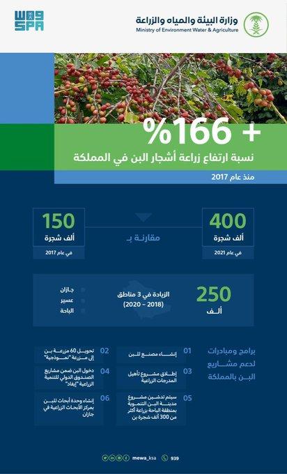 السعودية تحقق قفزة في زراعة 400 ألف شجرة بن بنهاية 2020 - المواطن