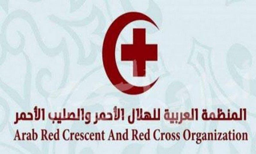 المنظمة العربية للهلال الأحمر والصليب الأحمر تدين استهداف الحوثي لمدرسة في عسير