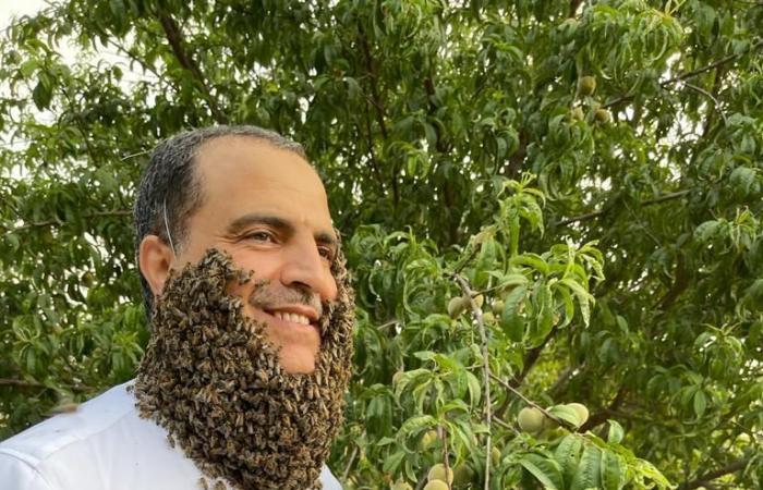 تجربة خطيرة.. نحال بالباحة يجمع مئات النحل لتشكل لحية حول وجهه