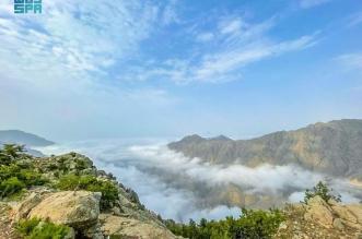 أحزمة الضباب على قمم جبال منطقة الباحة