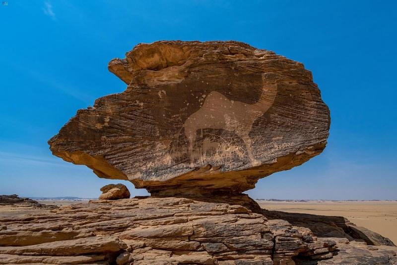وزير الثقافة: السعودية غنية بمواقع التراث المهمة على خارطة الحضارات الإنسانية - المواطن