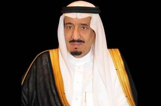 الملك سلمان يتلقى اتصالًا هاتفيًّا من رئيس الانتقالي في تشاد - المواطن