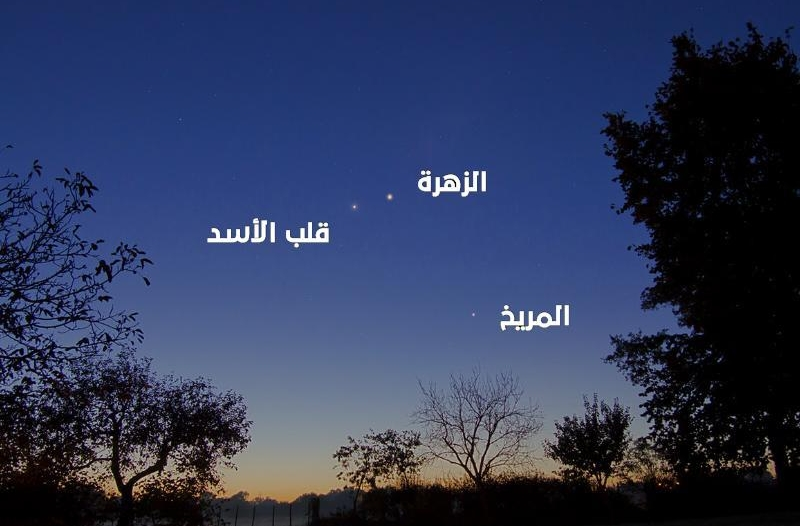 فلكية جدة: الزهرة يقترن بقلب الأسد الليلة