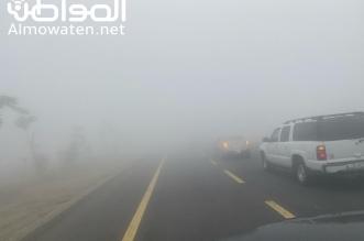 الضباب الكثيف يغطي أبها وشلل في الحركة المرورية - المواطن