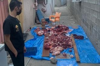 أمانة عسير تضبط 160 كجم من اللحوم الفاسدة في مدينة أبها