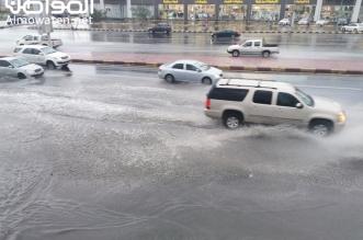 المسند: سقوط الأمطار في أغسطس نادر جداً وهذه حالات الاستثناء - المواطن