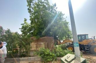 إزالة تعدٍّ جزئي على موقع حديقة عامة في زهرة العمرة - المواطن