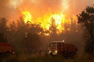 اندلاع حرائق في غابات فرنسا بسبب موجة الحر الشديد - المواطن