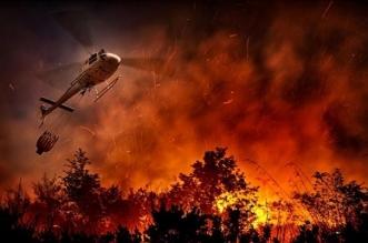 موجات الحر تشعل أكثر من 500 حريق في إيطاليا - المواطن