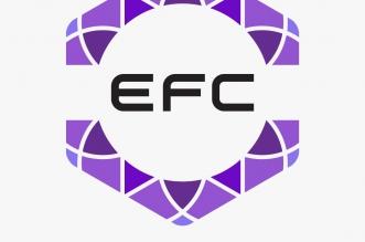 كأس اتحاد الرياضات الإلكترونية