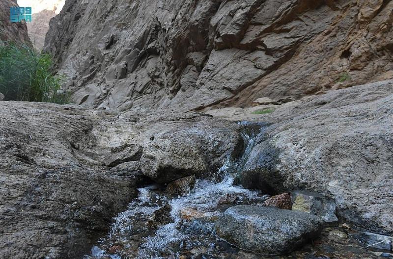وادي العيون بتبوك عناق التاريخ والطبيعة ووجهة التخييم والاستجمام - المواطن