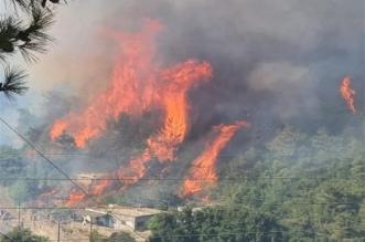 الحرائق تخلي محطة كهرباء تعمل بالطاقة الحرارية في تركيا - المواطن