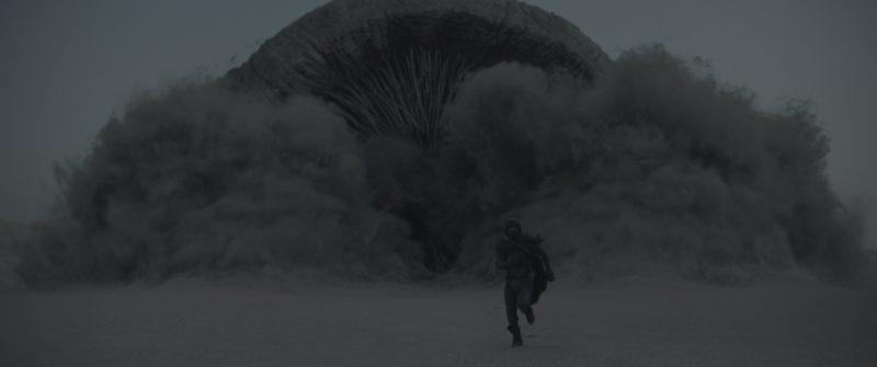 قصة فيلم Dune وسبب اختيار أبوظبي لتصوير مشاهد الصحراء - المواطن