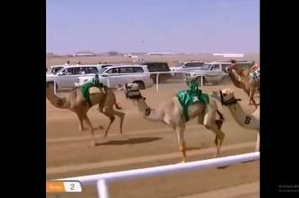عبدالعزيز بن سعود لمعلق مهرجان ولي العهد للهجن: سلامك وصل والكأس سعودي - المواطن