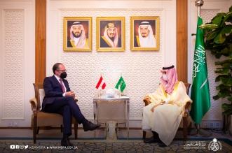 وزير الخارجية يستقبل وزير خارجية النمسا